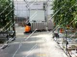 Minituur van Berg Hortimotive Betrac