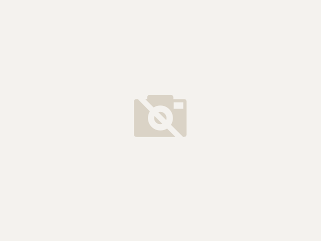 Minituur van Toyota Avensis Avensis
